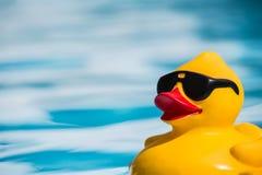 Rubber duckie Royaltyfria Bilder