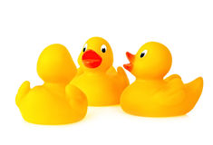 Rubber Duckie Conversation Royalty Free Stock Photos