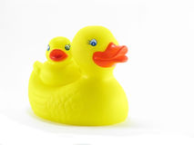 Rubber Duckies Royalty Free Stock Images
