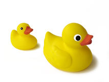 Rubber Duckies. Big and small rubber ducks Royalty Free Stock Photography