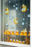Rubber Duckies Stock Photo