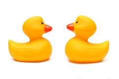 Rubber Duckies Royalty Free Stock Photo