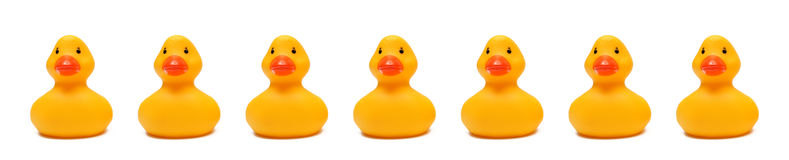 Rubber Duckies Royalty Free Stock Image