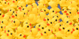 Rubber Duckies. A small pool filled with floating bright yellow rubber ducks at an amusement park for kids Royalty Free Stock Photos