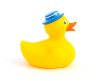 Rubber duckling Stock Images
