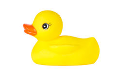 Rubber Duckling Royalty Free Stock Photography