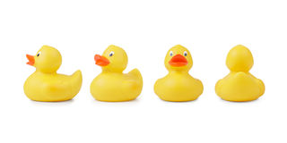 Rubber Duckling In A Different Angle Of View Stock Images