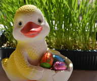 Rubber duckling and easter eggs. Stock Photography