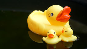 Rubber duckling floating in the black water Stock Photography