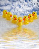 Rubber ducklings Stock Images