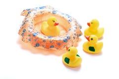 Rubber Ducks Stock Photos