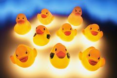 Rubber Ducks Royalty Free Stock Photography