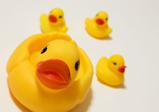 Rubber Ducks. Rubber Duck Bathtub toys for kids Stock Photo