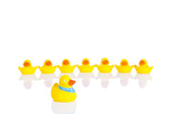 Rubber ducks. Yellow rubber ducks in a line Royalty Free Stock Images