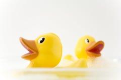 Rubber ducks. In bubble bath Stock Photos