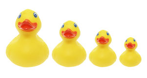 Rubber Ducks Royalty Free Stock Image