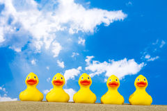 Rubber ducks on beach Stock Photography