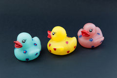 Rubber ducks on black background Stock Photography