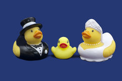 Rubber Ducks Bride and Groom and Duckling Royalty Free Stock Image