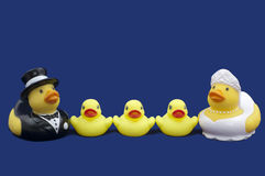 Rubber Ducks Bride and Groom and three Ducklings Stock Photos