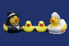 Rubber Ducks Bride and Groom and Two Ducklings Royalty Free Stock Photography