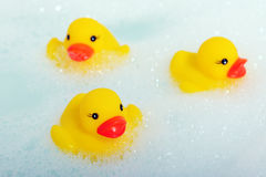 Rubber ducks in foam stock image