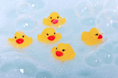 Rubber ducks in foam royalty free stock photos