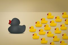 Rubber ducks in leadership concept on a yellow background stock photos