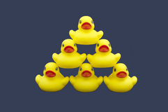 Rubber Ducks Pyramid Stock Photography