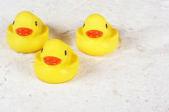 Rubber ducks in the sand at the beach Royalty Free Stock Image