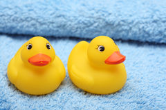 Rubber Ducks on the soft towel Royalty Free Stock Photography
