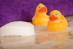 Rubber Ducks in a Tub. Two rubber ducks and a bar of soap floating in a tub with a purple terry towel in the background stock photo