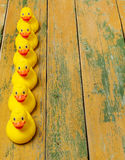 Rubber ducks on wood Stock Image
