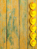 Rubber ducks on wood Stock Photography