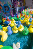 Rubber ducky. 's in a pool at a fair Royalty Free Stock Photos