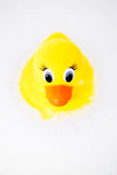 Rubber Ducky. A child's play toy, a rubber ducky in a bubble bath Stock Photography