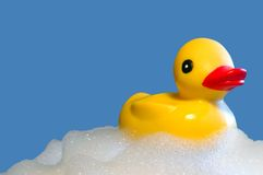 Rubber Ducky. Yellow, rubber ducky floating in bubbles royalty free stock photos