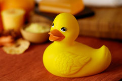 Rubber Ducky. Warm bath scene with focus on bright rubber ducky Stock Image