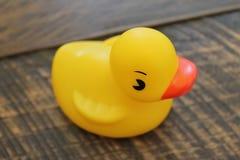 Rubber Ducky badkarleksak på en isolerad träbakgrund Royaltyfria Bilder