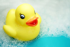 Rubber ducky at bath-time. Rubber ducky against a bubbly blue background stock images