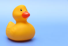 Rubber Ducky Royalty Free Stock Photo