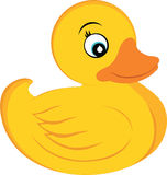 Rubber Ducky Stock Photography