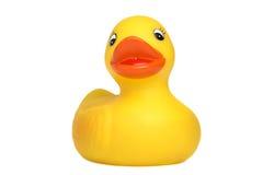 Rubber ducky met het knippen van weg stock afbeelding