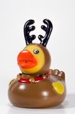 Rubber Ducky Reindeer Stock Photography