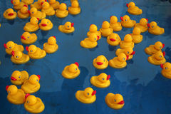 Rubber Ducky's. In a pool at a carnival Royalty Free Stock Images
