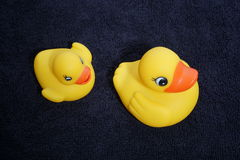 Rubber ducky and towel Stock Images