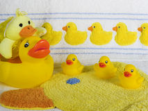 Rubber Duckys Royalty Free Stock Photos