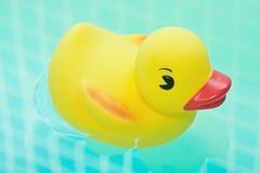 Rubber eend in badbadkamers Stock Afbeeldingen