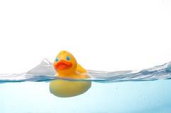Rubber Eend in Water royalty-vrije stock foto's