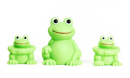 Rubber Frog Stock Images
